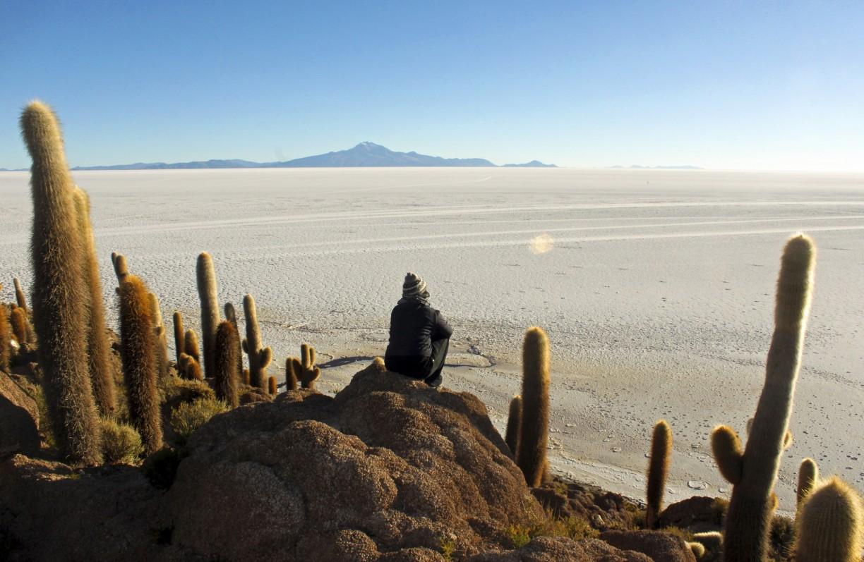 Isla Incahuasi i Salar de Uyuni
