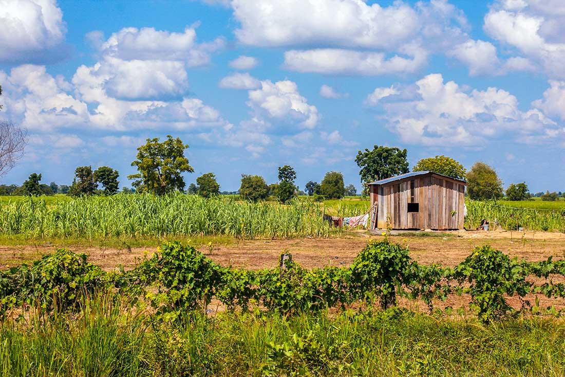 landskaber i cambodia