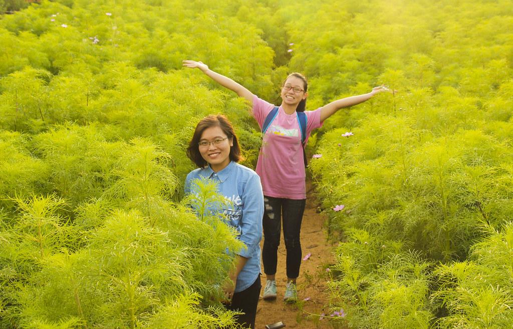 vietnamesere i hanoi