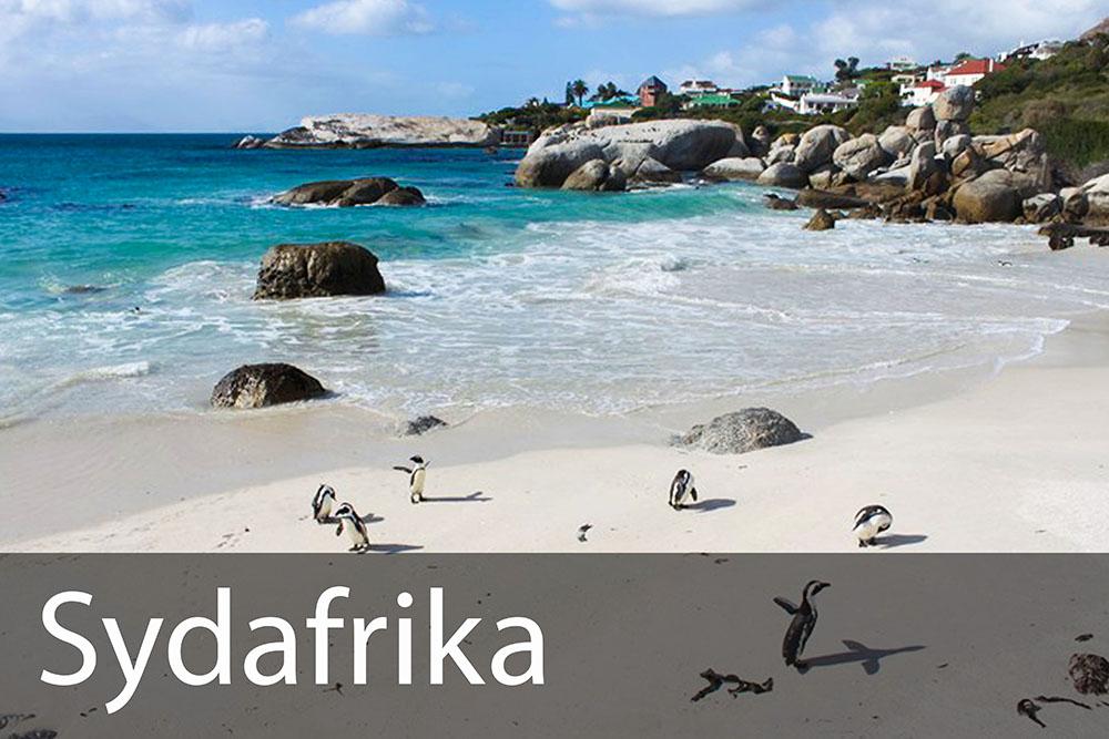 rejseinspiration til Sydafrika