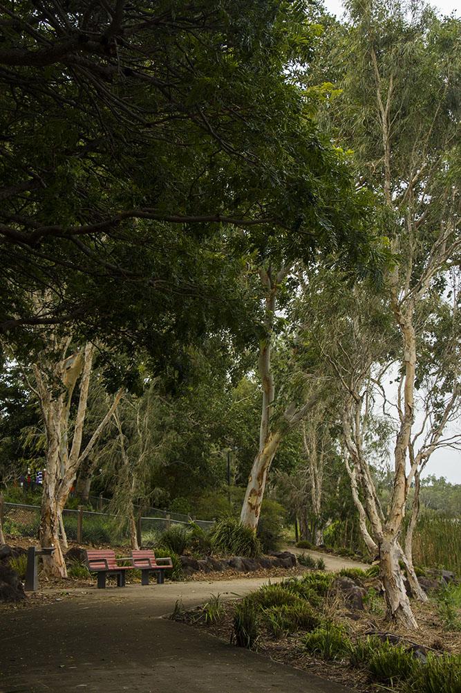 park i Townsville