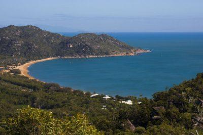 The Forts Walk - det bedste sted at se vilde koalaer i Australien!