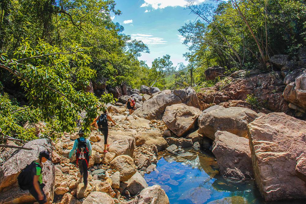 Bushwalking ved Killymoon Creek, Townsville