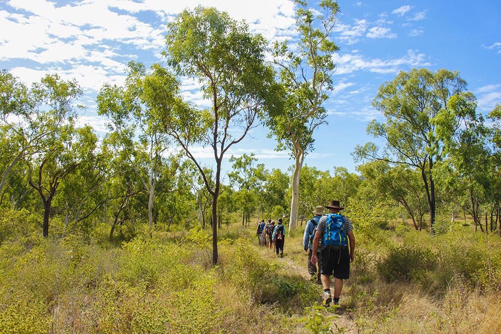 den australske bush