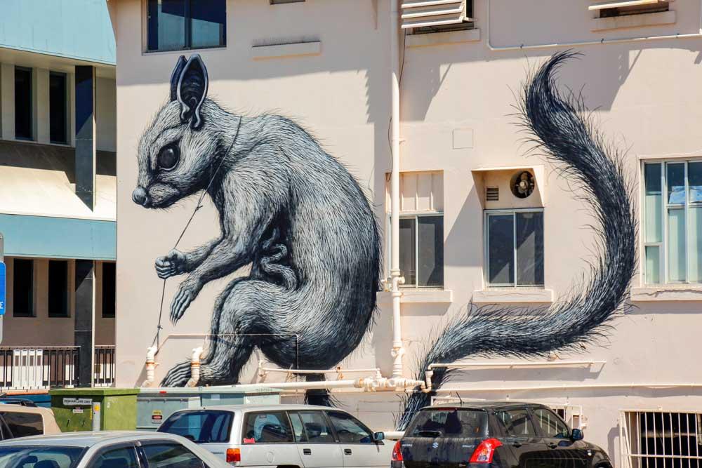 graffiti i Townsville