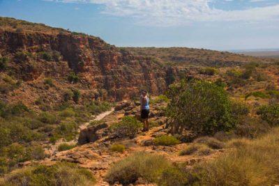 sparetips til vestaustralien