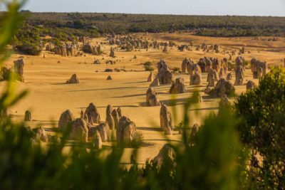 Pinnacles National Park i Vestaustralien