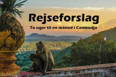 Rejseguide: Cambodja i to uger til en måned, hvad kan du nå?