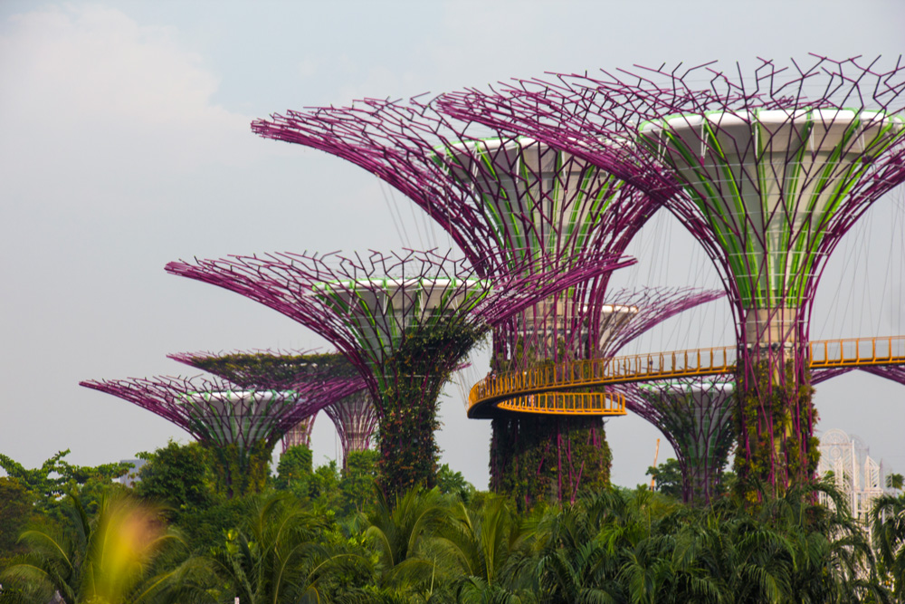 Gardens by the Bay – besøg i de to drivhuse i Singapore