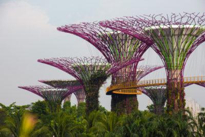 Rejseblog: Gardens by the Bay - besøg i de to drivhuse i Singapore