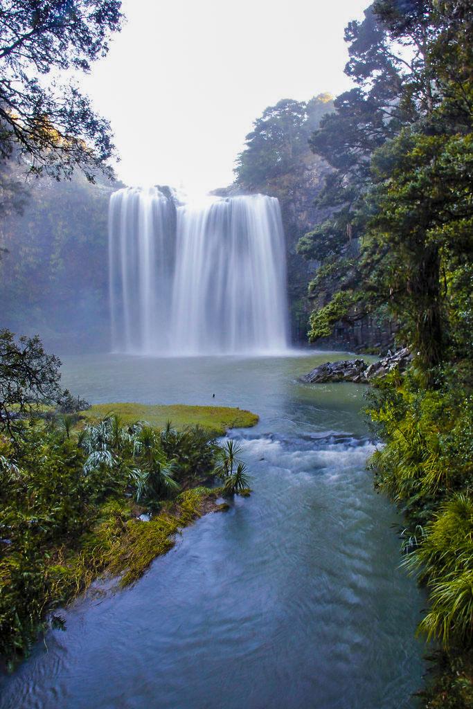 Whangarei waterfall, new zealand