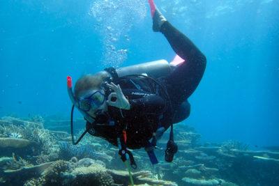 Rejseblog: Snorkeling og dykning på Great Barrier Reef, Australien