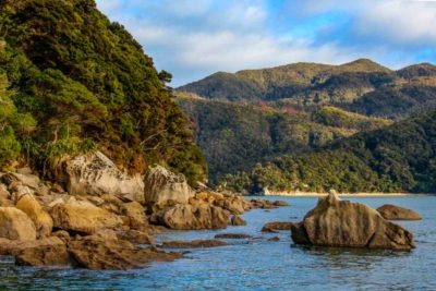 Rejseblog: Trekking og cruise i Abel Tasman National Park, New Zealand