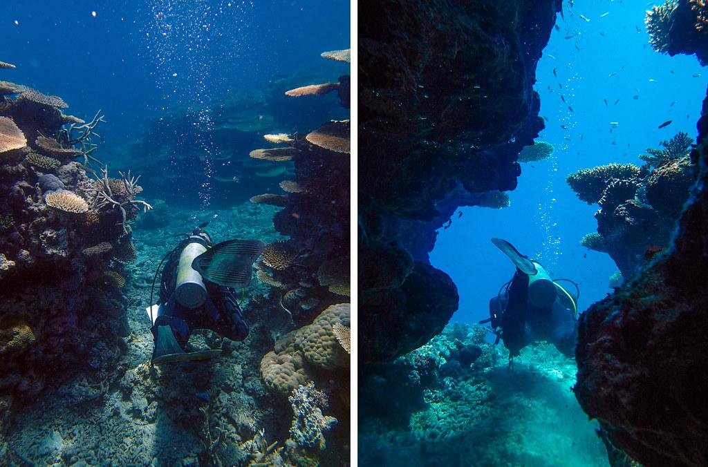 huler på great barrier reef