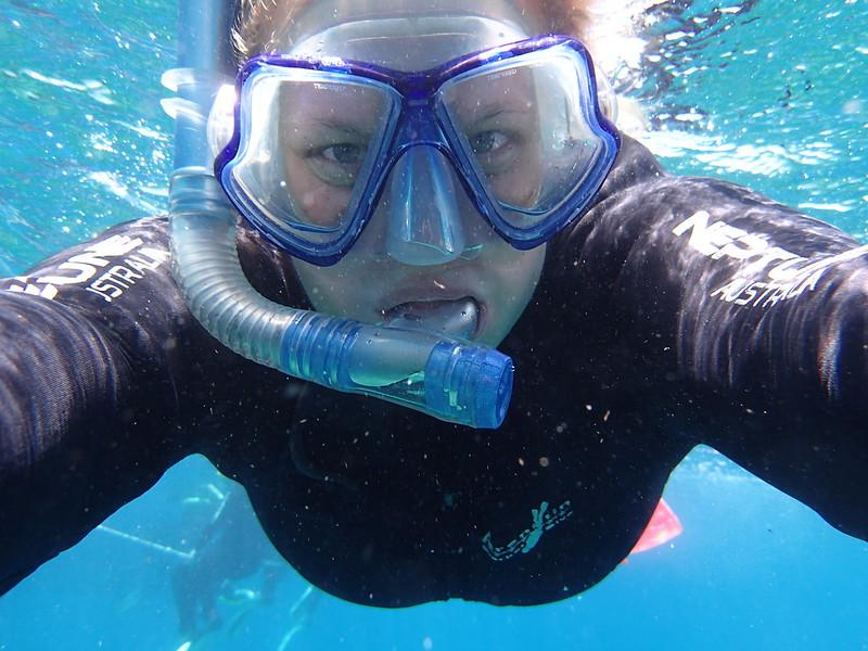 snorkeling på Great Barrier Reef
