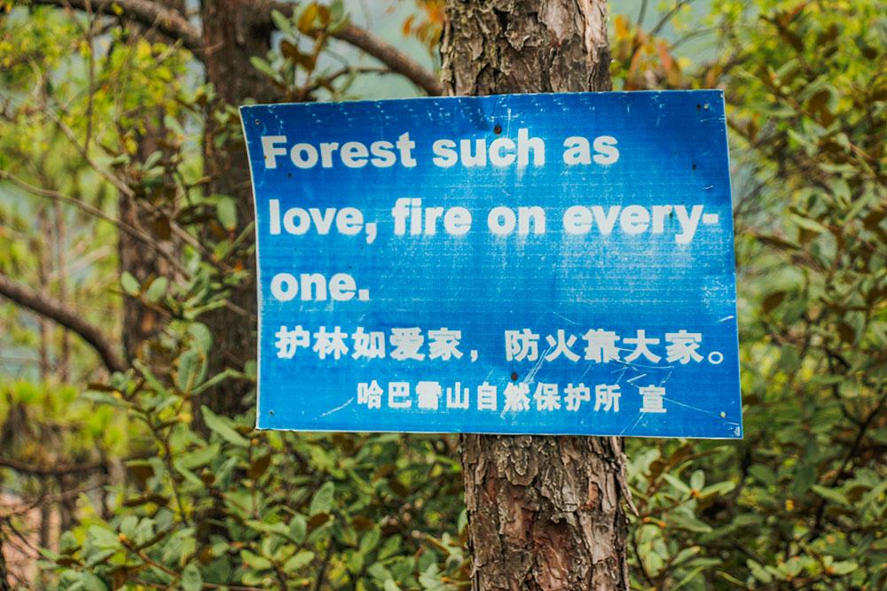 dårlige oversættelser i kina
