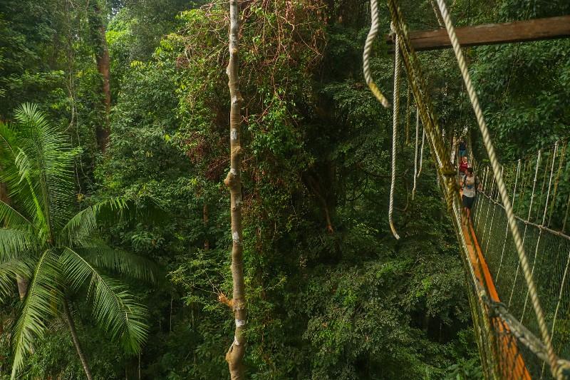 Oplevelser i Malaysia
