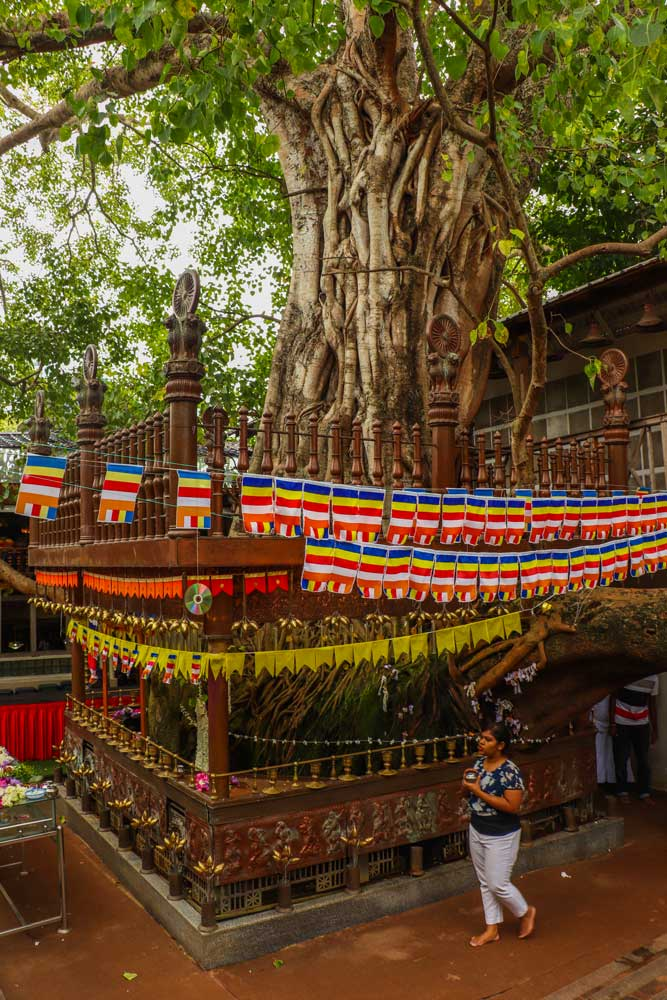Gangaramaya templet
