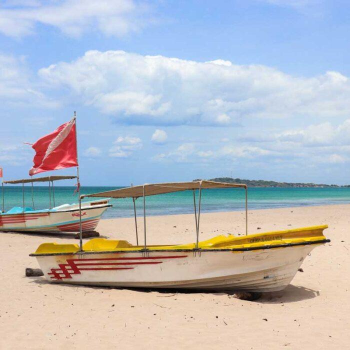 Ruteforslag – Sri Lanka: To uger til en måned – hvad kan man nå?