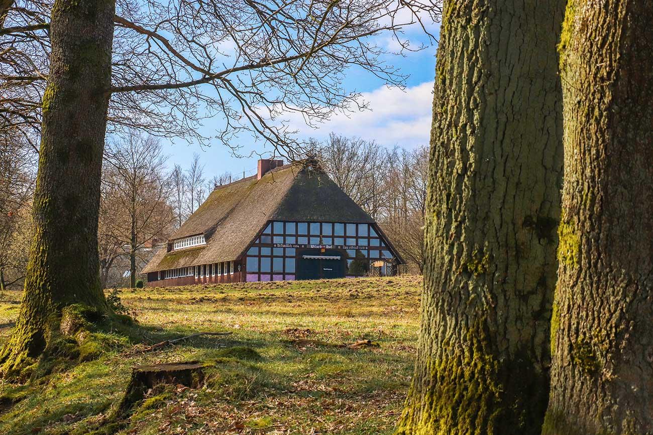 hvor skal man spise i Lüneburger Heide