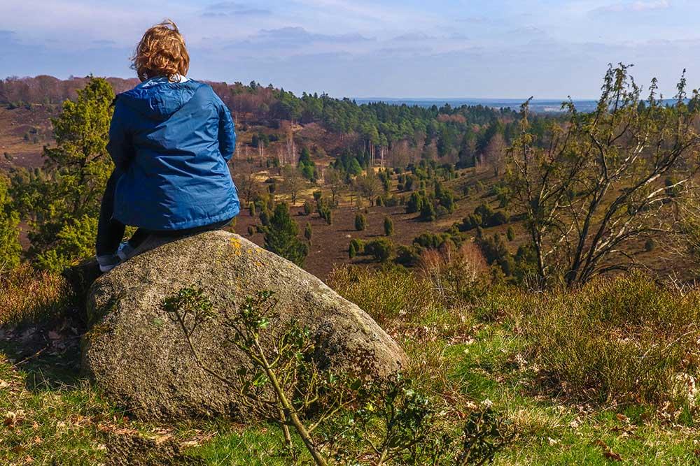 Heidschnuckenweg - Tysklands smukkeste vandrerute