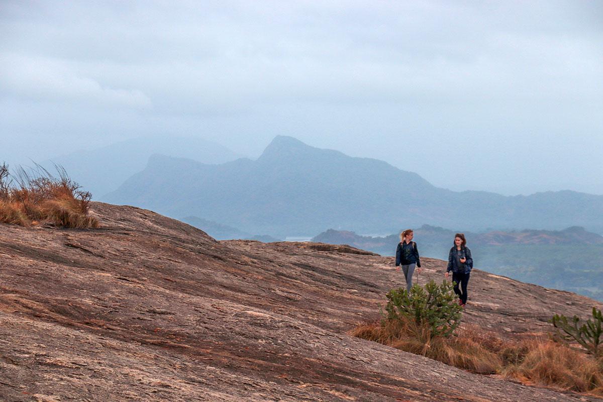 rejsende ved pidurangala rock