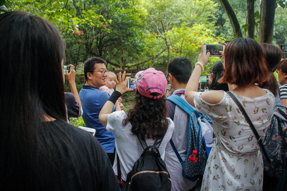 kineser selfie
