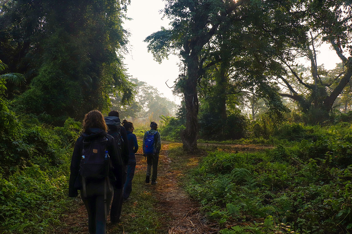 walking safari i chitwan national park
