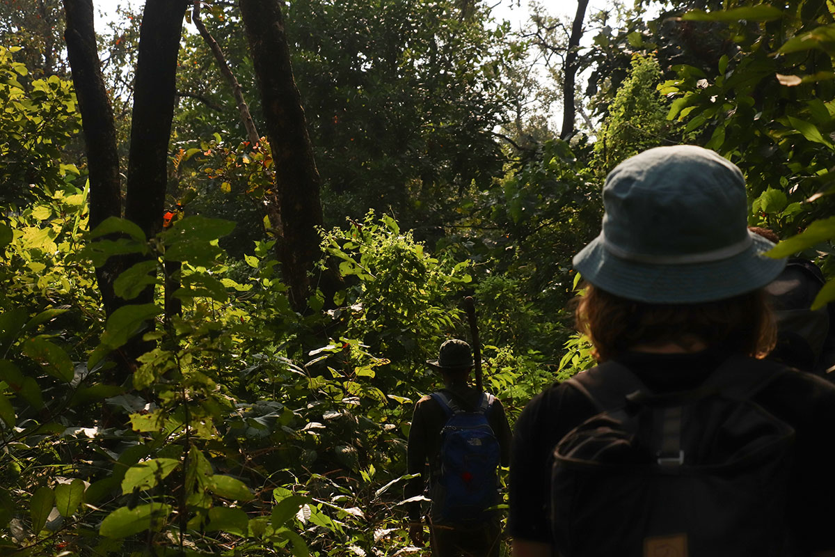 junglen i nepal
