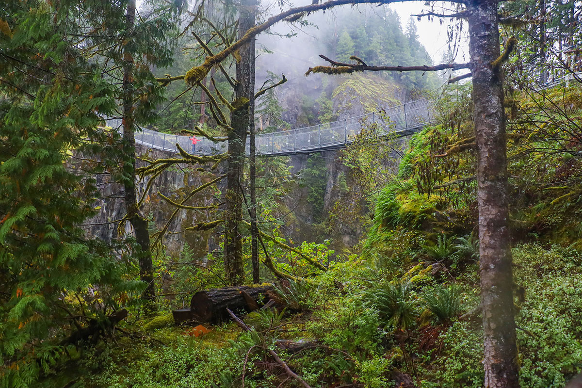 elk falls suspension bridge, vancouver island