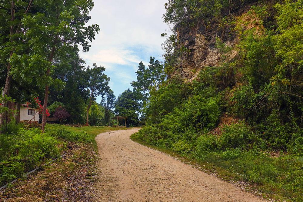 vejene på cebu island