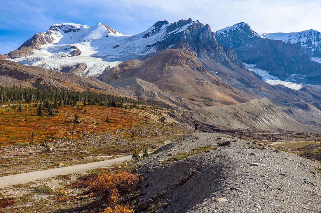 athabasca mountain, jasper national park, alberta, canada