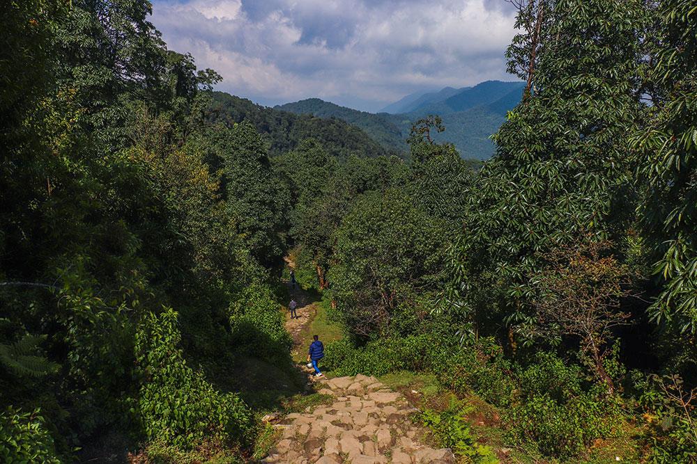 phedi i Nepal