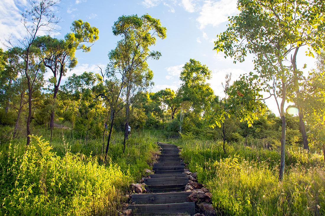 jcu walking trail, Townsville, Queensland, Australien