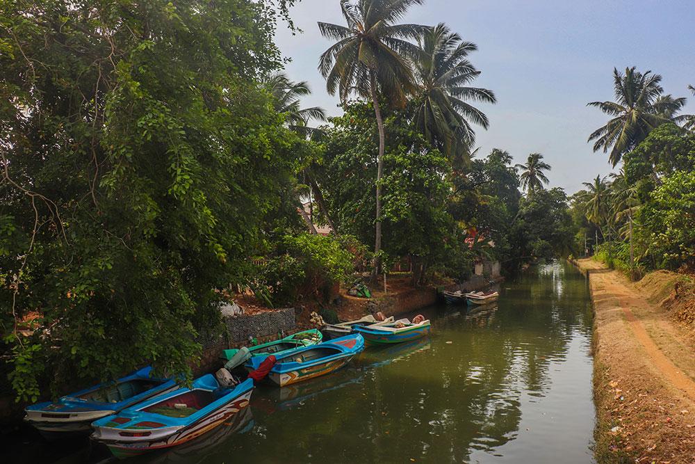 hamilton canal, Negombo