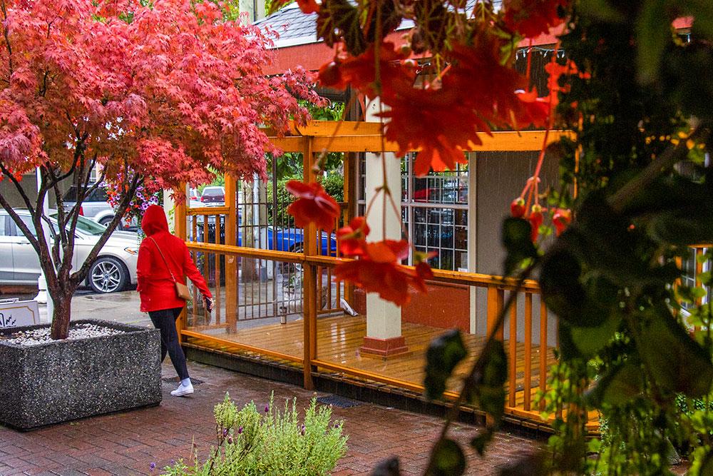 old city quarter, nanaimo, vancouver island