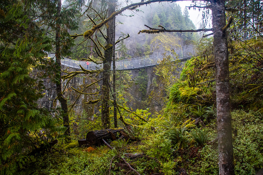 Vancouver Island – Gode oplevelser og skuffelser