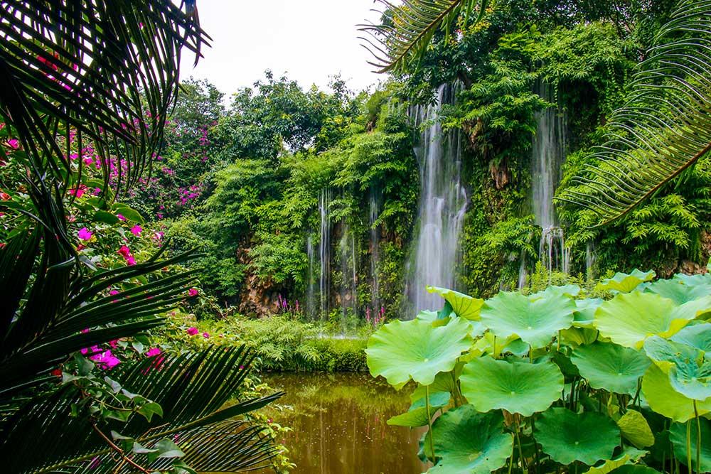 Chengdu – Seværdigheder og rejsetips til Sichuans hovedstad